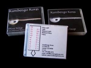 kora-strings-2-sm